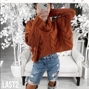 Harvest- in Amber Sweater NWT